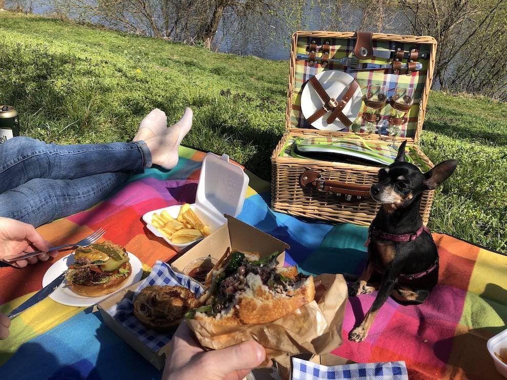 dusan soucek picnic