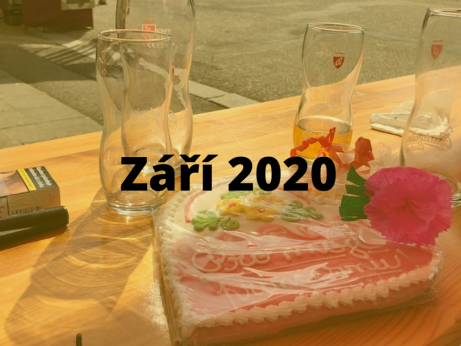 report zari 2020