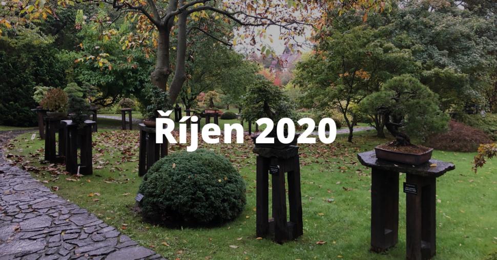 rijen 2020 2